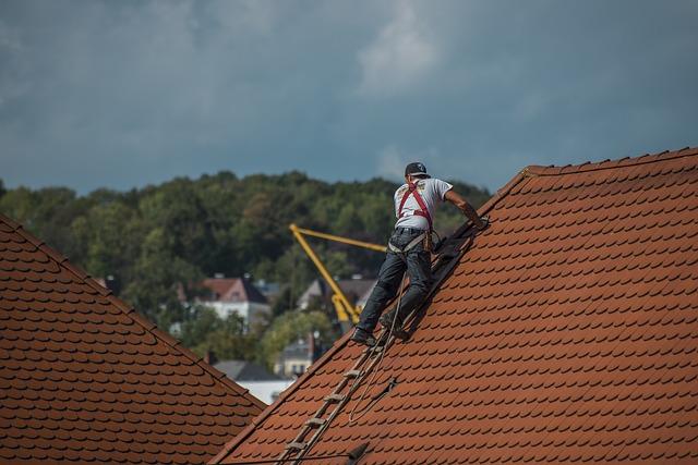 לזפת את הגג